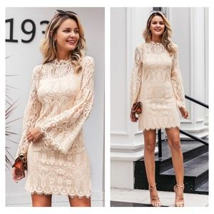 All over Lace Beige Mini Dress Bell Sleeves